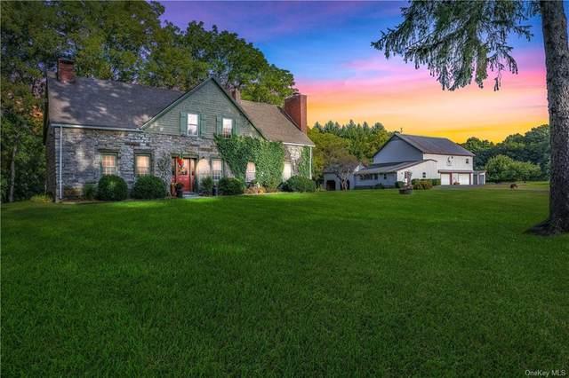 1032 Kings Highway, Saugerties, NY 12477 (MLS #H6105894) :: Signature Premier Properties