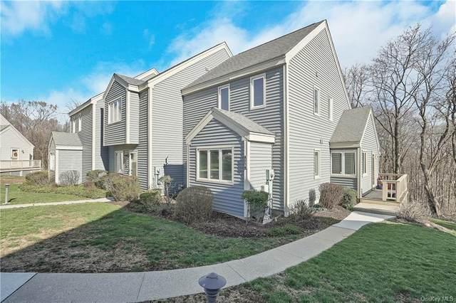 138 Fields Lane, Peekskill, NY 10566 (MLS #H6105900) :: Mark Seiden Real Estate Team