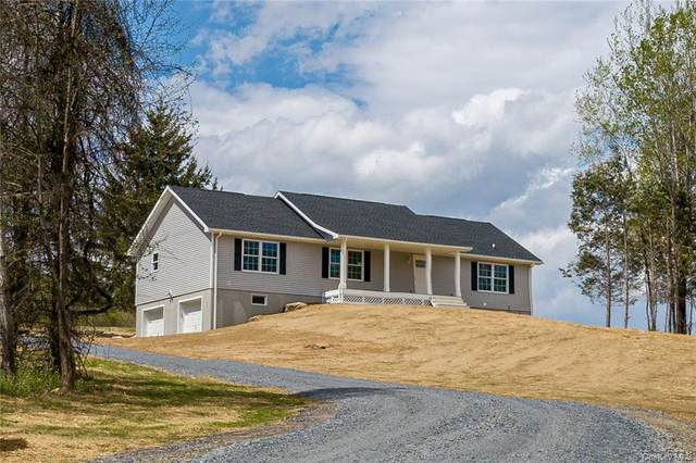 15 Spruce Hill, Amenia, NY 12501 (MLS #H6105990) :: McAteer & Will Estates | Keller Williams Real Estate