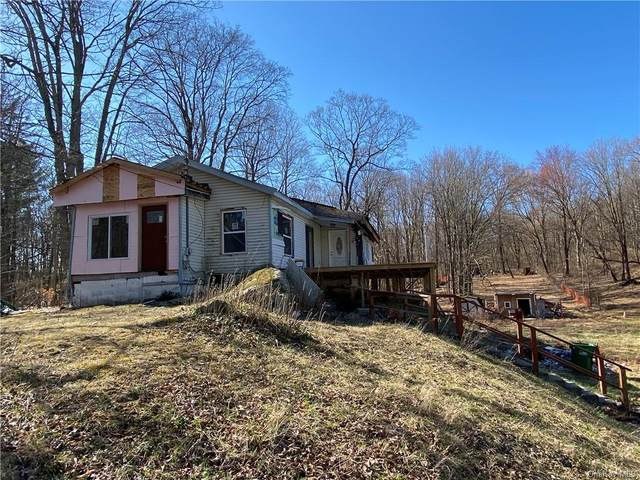 22 Willow Cross Road, Hyde Park, NY 12538 (MLS #H6106338) :: Corcoran Baer & McIntosh