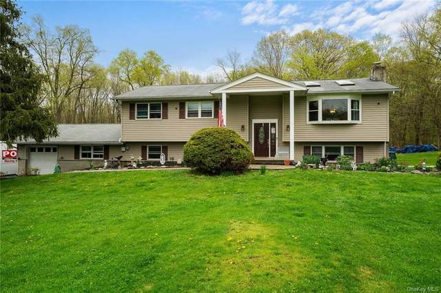32 Rena Marie Circle, Washingtonville, NY 10992 (MLS #H6106456) :: Cronin & Company Real Estate