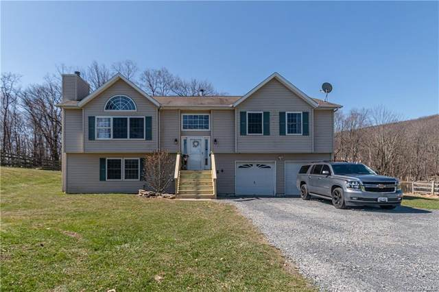 20 Buttonwood Road, Bloomingburg, NY 12721 (MLS #H6106515) :: Mark Boyland Real Estate Team