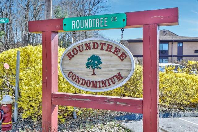 12 Roundtree Circle, Piermont, NY 10968 (MLS #H6106539) :: Corcoran Baer & McIntosh
