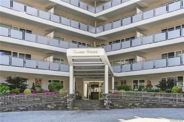 300 Martine Avenue 6M, White Plains, NY 10601 (MLS #H6106591) :: Howard Hanna Rand Realty