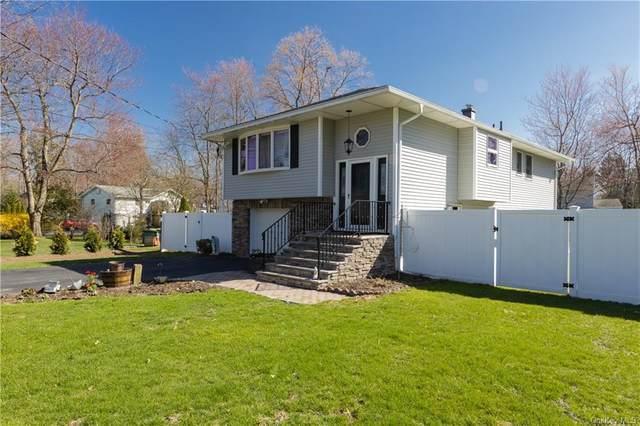 42 Van Zandt Drive, Pearl River, NY 10965 (MLS #H6106601) :: Corcoran Baer & McIntosh