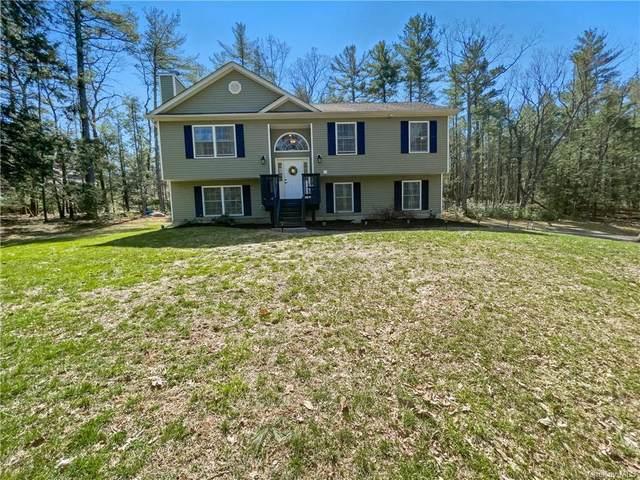 122 Boehmler Road, Sparrowbush, NY 12780 (MLS #H6106633) :: Cronin & Company Real Estate