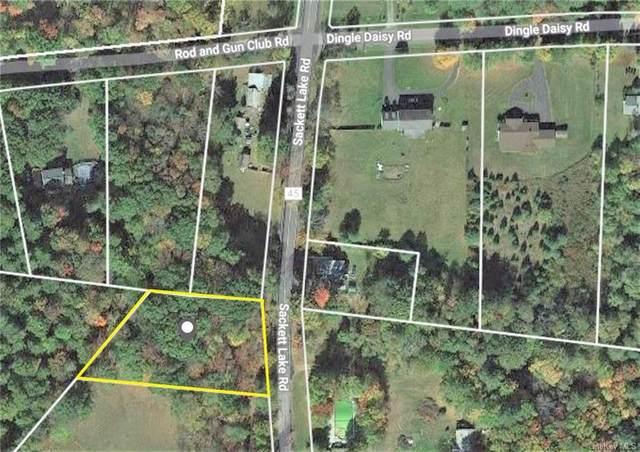 Sackett Lake Road, Forestburgh, NY 12777 (MLS #H6106680) :: RE/MAX RoNIN