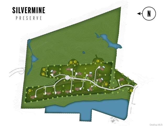 Lockwood Road, South Salem, NY 10590 (MLS #H6106695) :: Mark Boyland Real Estate Team