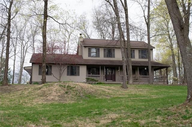 14 Forest Brook Lane, Hyde Park, NY 12538 (MLS #H6106934) :: Signature Premier Properties
