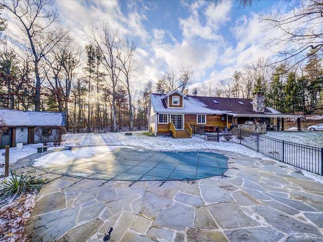 1813 County Route 10, Ancram, NY 12502 (MLS #H6106978) :: Barbara Carter Team