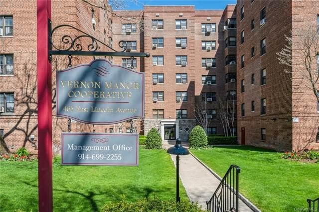 465 E Lincoln Avenue #408, Mount Vernon, NY 10552 (MLS #H6107116) :: Howard Hanna | Rand Realty