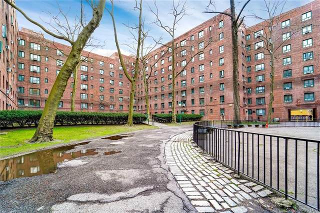 1470 Parkchester Road Mb, Bronx, NY 10462 (MLS #H6107124) :: McAteer & Will Estates | Keller Williams Real Estate