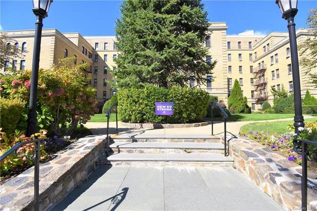 43 Calton Road 2M, New Rochelle, NY 10804 (MLS #H6107296) :: Kendall Group Real Estate | Keller Williams