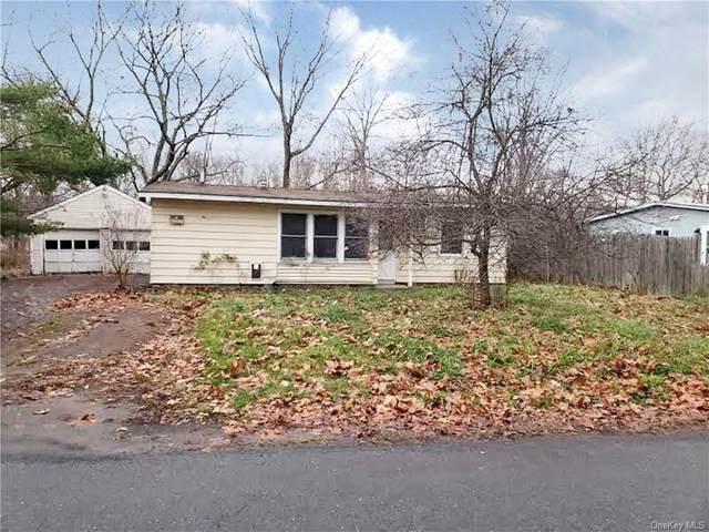 1 Park Circle, Mount Marion, NY 12456 (MLS #H6107331) :: Cronin & Company Real Estate