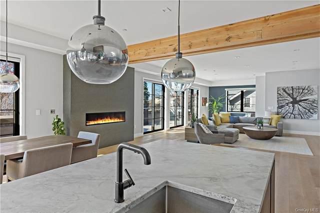 50 Chestnut Street 1 & 2, Dobbs Ferry, NY 10522 (MLS #H6107347) :: Signature Premier Properties