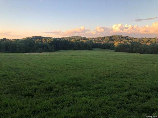 35 Banker Drive, Chester, NY 10918 (MLS #H6107467) :: Corcoran Baer & McIntosh