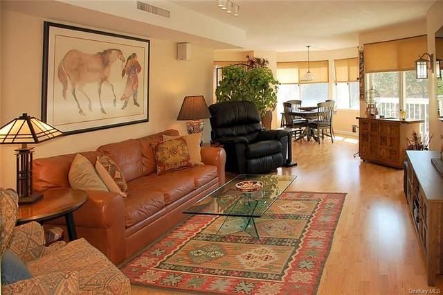 10 Stewart Place 3GE, White Plains, NY 10603 (MLS #H6107584) :: Signature Premier Properties
