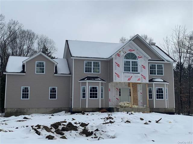 15 Morrow Court, Walden, NY 12586 (MLS #H6107716) :: Signature Premier Properties