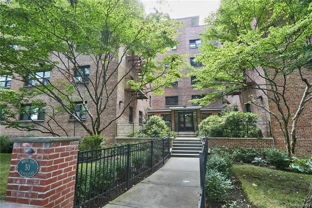 50 White Oak Street 3D, New Rochelle, NY 10801 (MLS #H6107726) :: McAteer & Will Estates | Keller Williams Real Estate