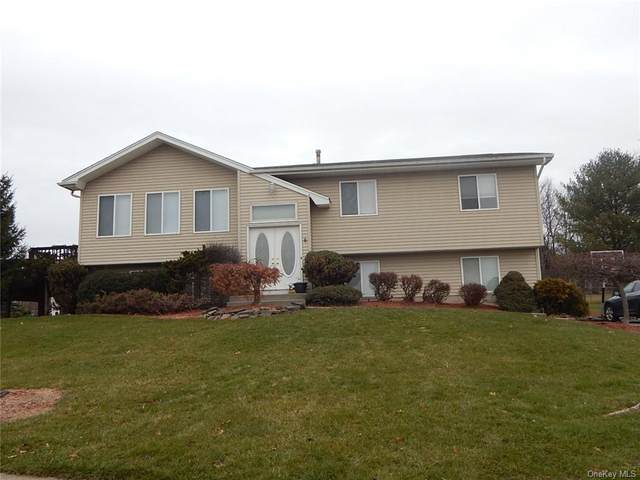 25 Milo Drive, Middletown, NY 10941 (MLS #H6107784) :: Kendall Group Real Estate | Keller Williams