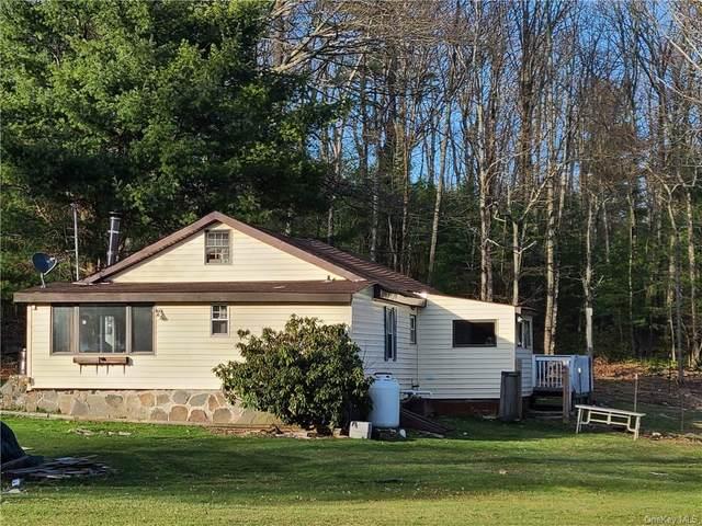 592 County Route 56, Wurtsboro, NY 12790 (MLS #H6107815) :: Mark Boyland Real Estate Team
