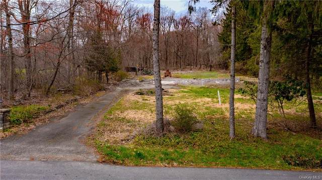 641 N Birch Hill Road, Patterson, NY 12563 (MLS #H6107862) :: Signature Premier Properties
