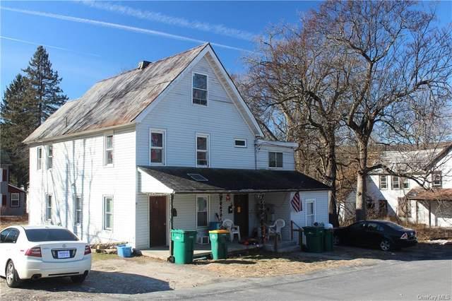 17 Chapel Street, Ellenville, NY 12428 (MLS #H6107885) :: Barbara Carter Team