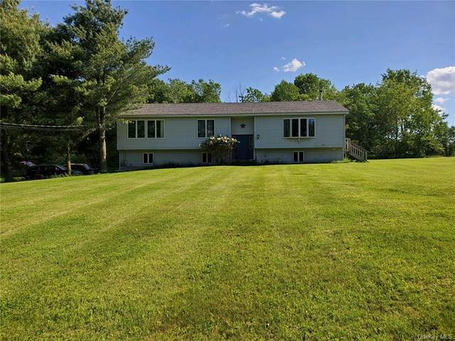 44 Steiglitz Road, Liberty, NY 12754 (MLS #H6107940) :: RE/MAX RoNIN