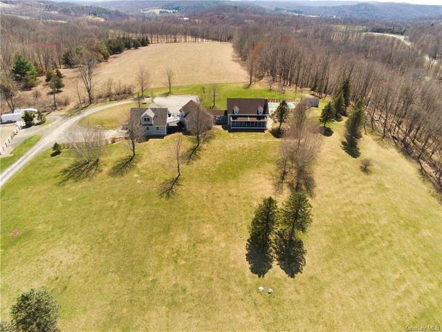 422 County Route 7, Pine Plains, NY 12567 (MLS #H6107946) :: Keller Williams Points North - Team Galligan