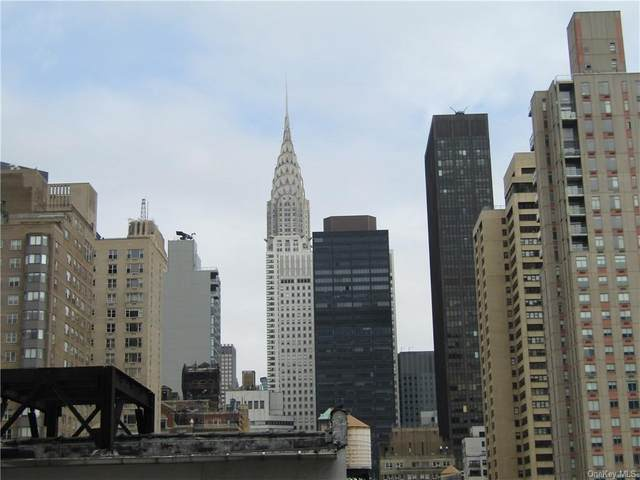 155 E 34th Street E 14S, Newyork, NY 10016 (MLS #H6107953) :: Barbara Carter Team