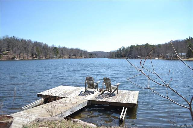 19 Lake Muskoday Road, Roscoe, NY 12776 (MLS #H6107974) :: Signature Premier Properties