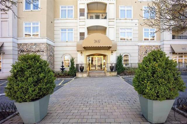 410 Westchester Avenue #101, Port Chester, NY 10573 (MLS #H6108079) :: Kendall Group Real Estate | Keller Williams