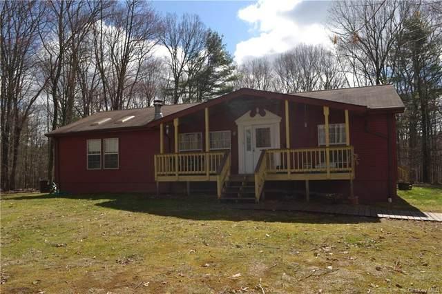 57 Serenity Drive, Callicoon, NY 12723 (MLS #H6108103) :: Signature Premier Properties