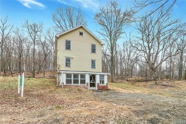 195 Montgomery Street, Goshen, NY 10924 (MLS #H6108106) :: Kendall Group Real Estate | Keller Williams