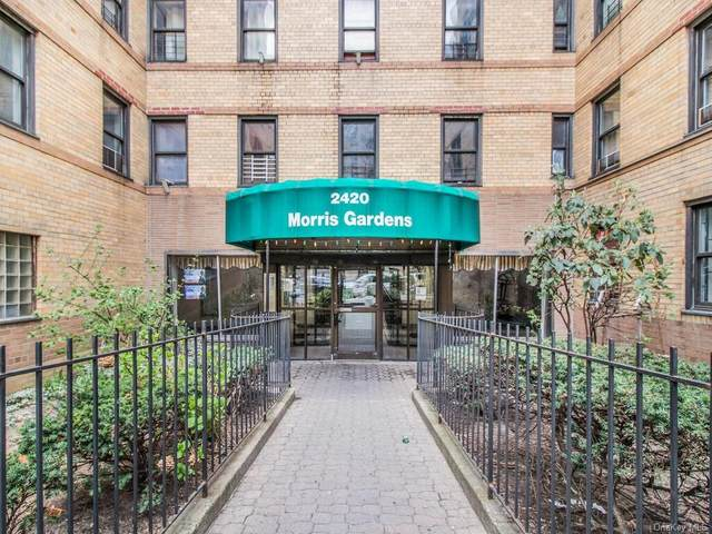 2420 Morris Avenue 4C, Bronx, NY 10468 (MLS #H6108134) :: Barbara Carter Team