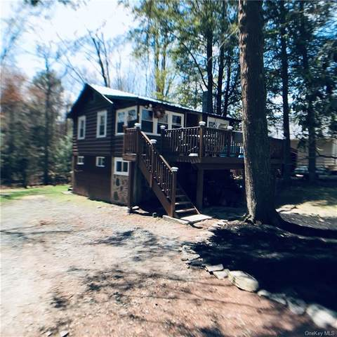17 W Thompson Place Tr 103, Smallwood, NY 12778 (MLS #H6108143) :: Barbara Carter Team