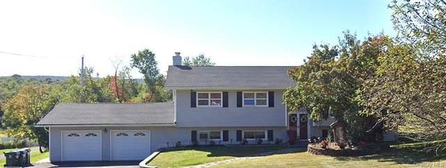 65 Greycourt Road, Chester, NY 10918 (MLS #H6108391) :: Mark Boyland Real Estate Team