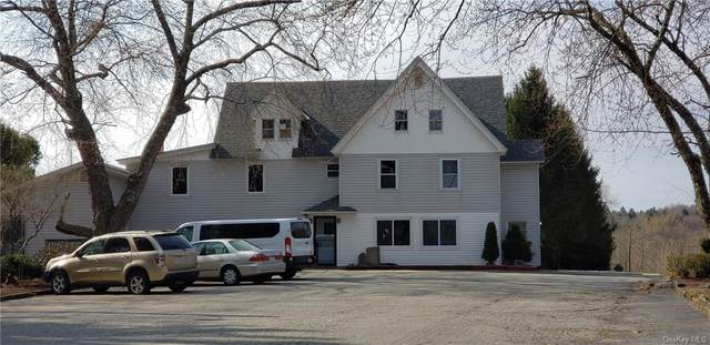 5253 State Route 52, Jeffersonville, NY 12748 (MLS #H6108485) :: Carollo Real Estate