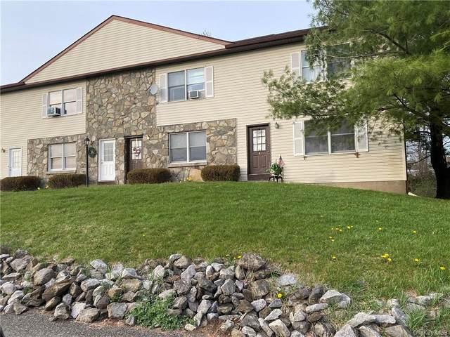 223 Vineyard Avenue, Highland, NY 12528 (MLS #H6108499) :: Cronin & Company Real Estate