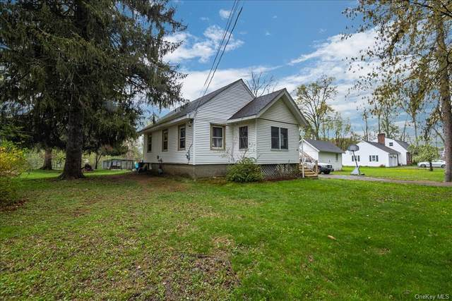 64 Euclid Avenue, Middletown, NY 10940 (MLS #H6108640) :: Cronin & Company Real Estate
