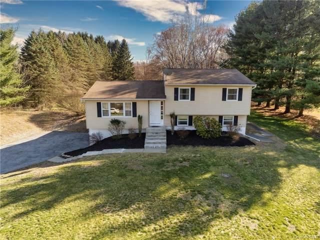 136 Wisseman Road, Lagrangeville, NY 12540 (MLS #H6108799) :: Signature Premier Properties