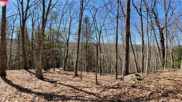 6 State Route 97, Cochecton, NY 12726 (MLS #H6108915) :: Barbara Carter Team
