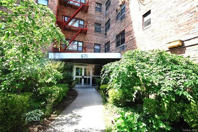 671 Bronx River Road 4H, Yonkers, NY 10704 (MLS #H6109147) :: Shalini Schetty Team