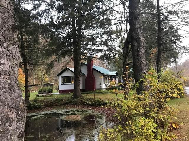 10568 County Hwy 28, Long Eddy, NY 12760 (MLS #H6109217) :: Carollo Real Estate