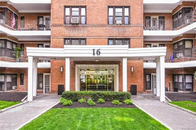 16 N Broadway 2 - O, White Plains, NY 10601 (MLS #H6109339) :: McAteer & Will Estates | Keller Williams Real Estate