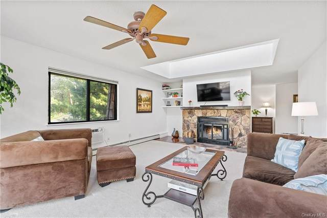 2 Briarcliff Drive S #215, Ossining, NY 10562 (MLS #H6109378) :: Corcoran Baer & McIntosh