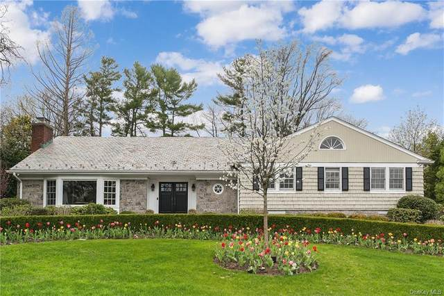 43 Meadow Road, Scarsdale, NY 10583 (MLS #H6109430) :: RE/MAX RoNIN