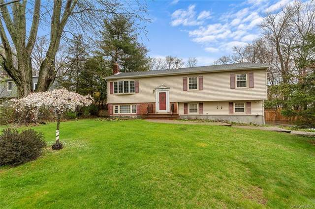 6 Cranberry Drive, Highland Mills, NY 10930 (MLS #H6109434) :: Signature Premier Properties