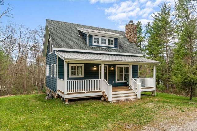 225 Lake Ridge Road, Narrowsburg, NY 12764 (MLS #H6109512) :: Signature Premier Properties