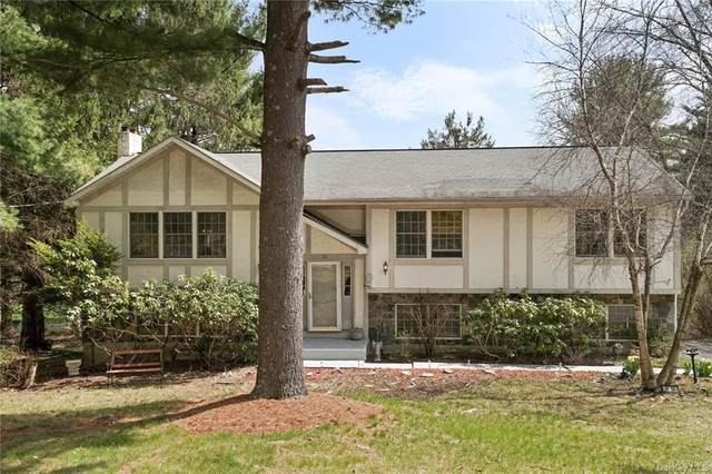 26 Walker Road, Hopewell Junction, NY 12533 (MLS #H6109522) :: Signature Premier Properties